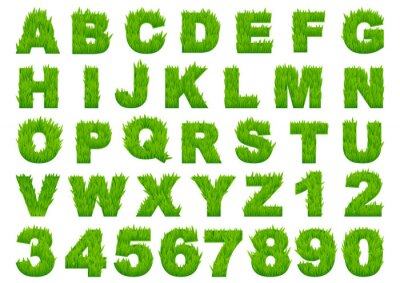 Carta da parati Verde erba alfabeto con lettere e numeri