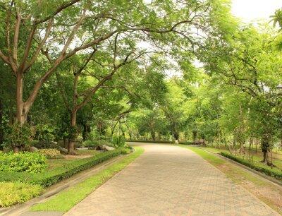 Carta da parati Via di pietra nel Parco Verde