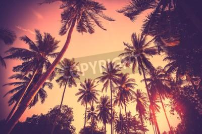 Carta da parati Vintage festa tonica vacanza fatta di palme albero sagome al tramonto.
