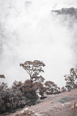 Carta da parati Vista da Machu Picchu