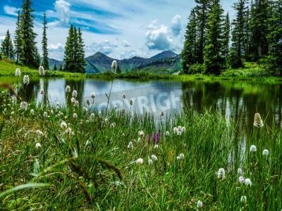 Carta da parati vista di Paridise Lake in Paridise Basin vicino Crested Butte Colorado