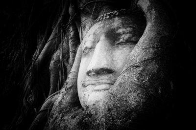 Carta da parati volto sereno e tranquillo di Buddha scolpito sulla pietra antica