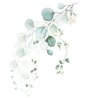 Carta da parati Watercolor floral illustration bouquet - green leaf branch collection, for wedding stationary, greetings, wallpapers, fashion, background. Eucalyptus, olive, green leaves, etc.