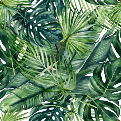 Carta da parati Watercolor hand painted seamless pattern with green tropical leaves of monstera, banana tree and palm on white  background.