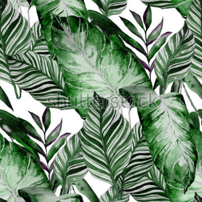 Carta da parati Watercolor seamless pattern with tropical leaves: palms, monstera, passion fruit. Beautiful allover print with hand drawn exotic plants. Swimwear botanical design.