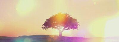 Carta da parati Widescreen paesaggio albero tramonto con effetto retrò