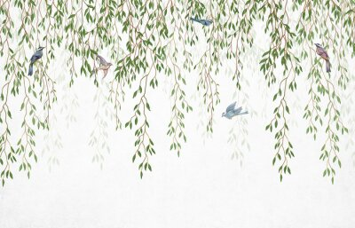 Carta da parati Willow branches hanging from above with birds on a white background. Wallpaper, murals and wall paintings for interior printing.
