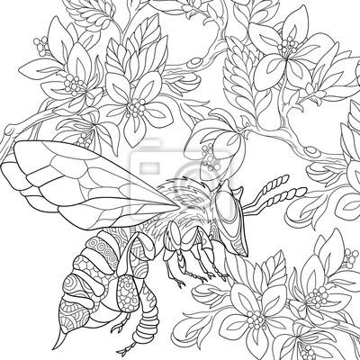 Zentangle Cartone Animato Ape Stilizzata Volare Tra Sakura Fiori