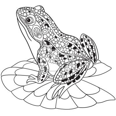 Zentangle Rana Cartone Animato Stilizzato Isolato Su Sfondo Carta