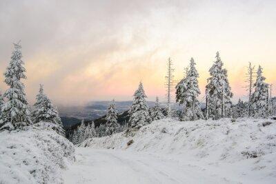 Carta da parati Zimowa droga w górach