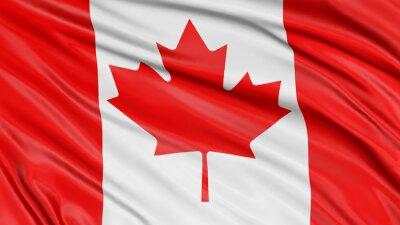 Poster 3D Canada Flag