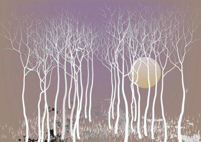 Poster alberi foresta astratta con congedo con la visione notturna della luna, albero bianco