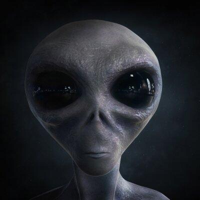 Poster alieno