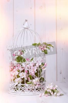 Poster Apple blossom filled antique birdcage on wooden background