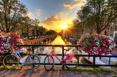 Poster Beautiful sunrise over Amsterdam, The Netherlands, with flowers and bicycles on the bridge in spring