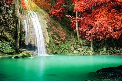 Poster Bella cascata nella foresta di autunno