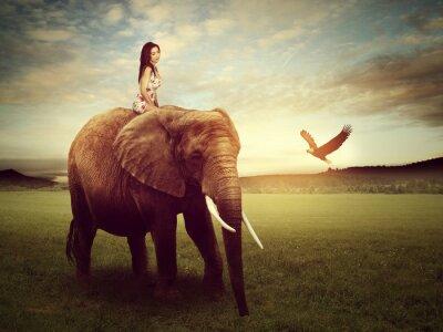 Poster bella donna seduta su un elefante