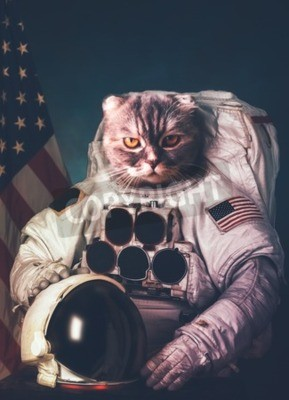 Poster Bellissimo gatto astronauta.