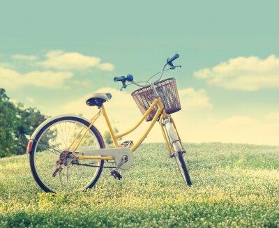 Poster Bicicletta sul campo di fiori bianchi e erba in natura sfondo sole