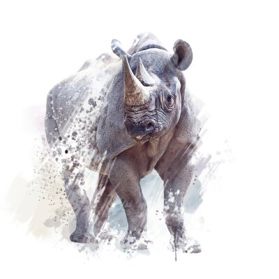 Poster black rhinoceros watercolor on white background