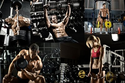 Poster body building