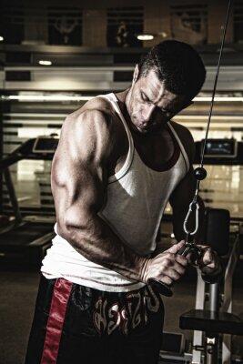 Poster Bodybuilder allena i muscoli in palestra