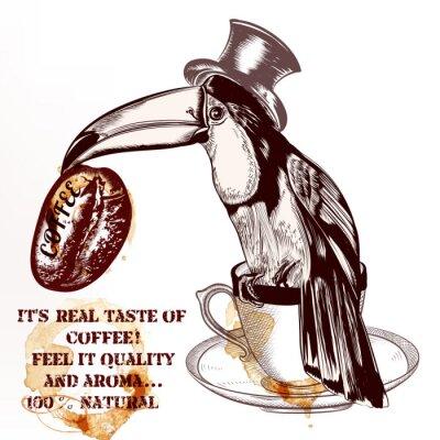 Poster Caffè sfondo vettoriale o poster con disegnata a mano tucano uccello h