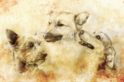 Poster Cani disegno a matita su carta antica, di carta d'epoca e vecchia struttura con macchie di colore.