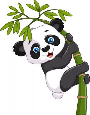 Poster Carino divertente baby panda appeso su un albero di bambù