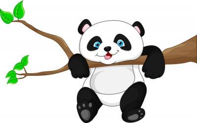 Poster Carino divertente baby panda appeso sull'albero