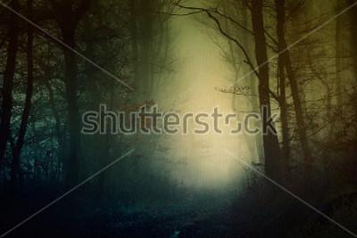 Poster Carta da parati mistica della foresta oscura