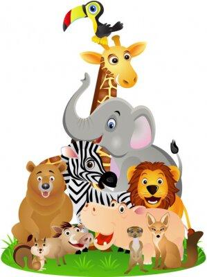 Poster Cartone animato animale