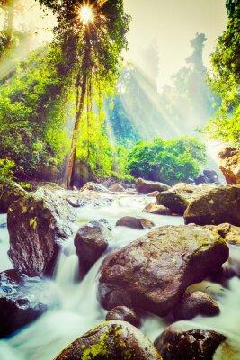 Poster Cascata tropicale