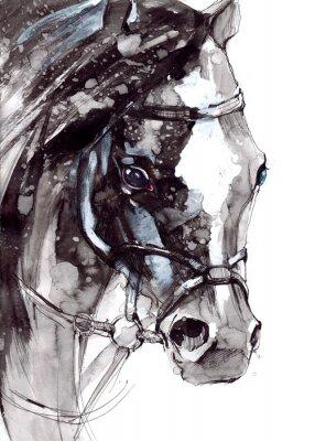 Poster cavallo