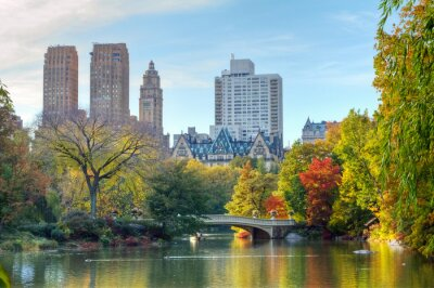 Poster Central Park in autunno