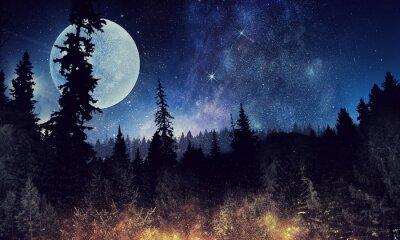 Poster Cielo stellato e luna. Supporti misti