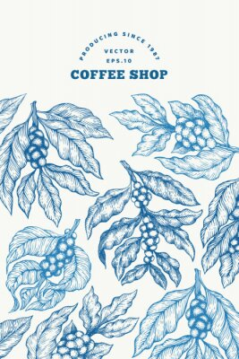 Poster Coffee tree branch vector illustration. Vintage coffee background. Hand drawn engraved style illustration.