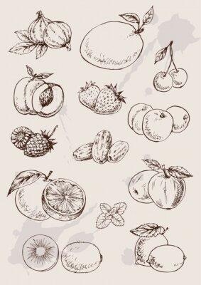 Poster collezione di disegno a mano isolato frutta