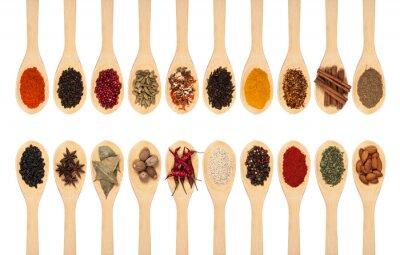 Poster collezione di spezie su cucchiai
