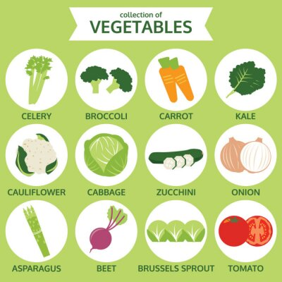 Poster collezioni di verdure, illustrazione vettoriale cibo, set di icone su