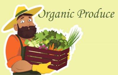 Poster coltivatore barbuto o giardiniere in un cappello detiene una scatola di legno con ripieno di verdure fresche e frutta, copia spazio sulla destra, EPS 8 illustrazione vettoriale, non lucidi