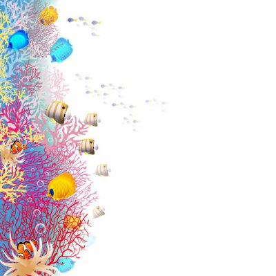 Poster coralreef