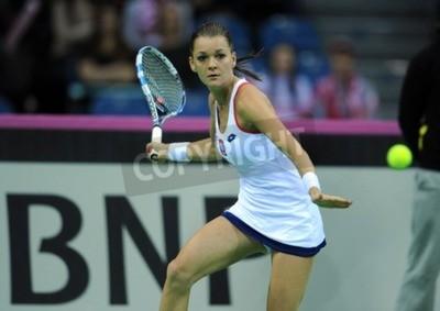 Poster CRACOVIA, Polonia - 7 febbraio 2015: Agnieszka Radwanska durante Fed Cup Tennis Cup in Polonia
