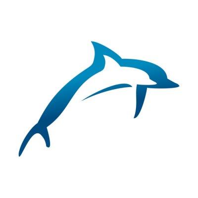 Poster delfini doppie