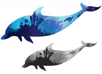 Poster delfino
