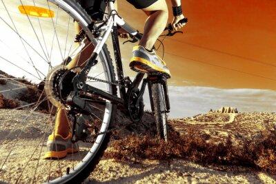 Poster Deportes. Bicicleta de Montaña y hombre.Deporte en esterno