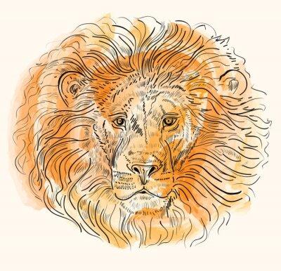 Poster disegnata a mano illustrazione vettoriale con testa di leone