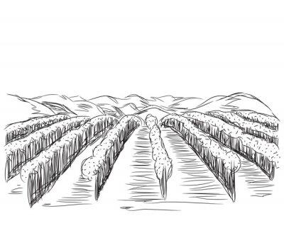 Poster Disegnata a mano Paesaggio con campi.