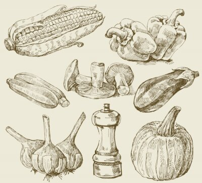 Poster Disegnati a mano set di verdure