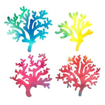 Poster disegnato decorativo acquerello corallo mano